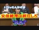4月3日  参議院 決算委員会  福島みずほ(希望の会(自由・社民))
