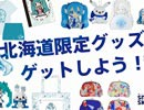 【雪ミク スカイタウン】ニコニコ超会議2017に出展!【初音ミク】
