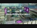 【S+99】至高を目指すカンストzap!【プレイ動画】