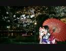 【夜桜舞う】 トキヲ・ファンカ 踊ってみた 【美音アモーレ】