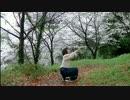 【オリジナル振付】桜花ニ月夜ト袖シグレ 踊ってみた【せんだ】