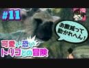 #11【人喰いの大鷲トリコ】可愛い恐いトリコとの冒険【女性実...