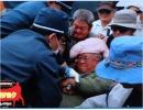 【沖縄の声】緊張が続く朝鮮半島、基地反対活動に振り回される動物たち、うるま市...