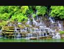 【究極の癒し】 川のせせらぎと風のざわめき