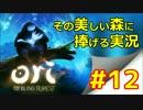 【実況】 「 Ori  」 その美しい森に捧げる実況 #12 【ゲーム】