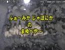 クロヤマアリの繭部屋を覗いてみる