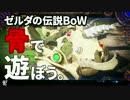 【ゼルダの伝説ブレスオブザワイルド】骨(スタル)で遊ぼう!!!!!