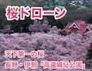 【桜ドローン】絶景!天下第一の桜を空から見物♪高遠城址公園(長野県伊那市)
