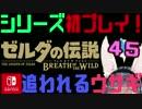 【ゼルダの伝説】シリーズ初見プレイだとこうなる【45日目】