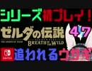 【ゼルダの伝説】シリーズ初見プレイだとこうなる【47日目】