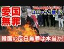 【韓国の反日無罪は本当か】 素朴な質問に答えてみた!もろん事実です!