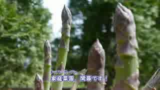 【ぼっち】アスパラ&石窯ピザ【キッチン・ガーデン #1】