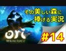 【実況】 「 Ori  」 その美しい森に捧げる実況 #14 【ゲーム】