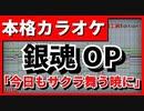 【フル歌詞付カラオケ】今日もサクラ舞う暁に【銀魂OP】(CHiCO with HoneyWorks)