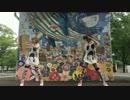 【イオサトミア】パンダヒーロー 踊ってみた