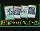 【遊戯王ADS】覇王白竜オッドアイズ・ウィング・ドラゴン【YGOPRO】
