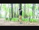 【いえねこ誕2017】未来景イノセンス 踊ってみた【あと4日】