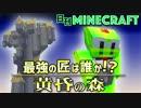 【日刊Minecraft】最強の匠は誰か!?黄昏の森 いざ黄昏へ2日目【4人実況】