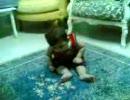 睡魔と闘う赤ん坊