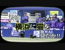 ブル男のプロ野球ニュース「君は横浜に猫を見たか!!」 2017年5月9日