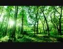 第83位:自然音 田舎の朝 鳥のさえずり thumbnail
