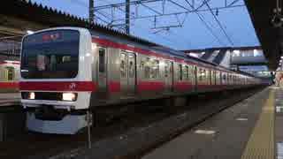 蘇我駅(JR京葉線)を発着する列車を撮ってみた