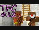 【Minecraft】生きる。#12【TFC実況】