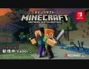 【マインクラフト】Minecraft  Nintendo Switch Edition ロー...