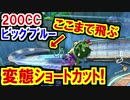 200CCビッグブルー変態ショートカットが激ヤバいwマリオカート8DX(49)