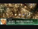 スーパーロボット大戦FGO 第218709話「正