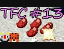 【Minecraft】生きる。#13【TFC実況】