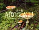 第87位:【キノコ狩り_20170514】 菌類探索記 「オオセミタケが胞子を飛ばすだけ」 thumbnail