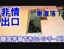【韓国が学習できないことが証明された】 また落下!トイレから落下!