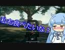 【PUBG】葵「お姉ちゃん、今日の夕飯はドン勝がいいな~?」part5