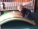 【ニコニコ動画】がんばる赤ちゃんを応援してあげてくださいを解析してみた