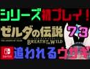 【ゼルダの伝説】シリーズ初見プレイだとこうなる【73日目】