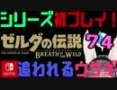 【ゼルダの伝説】シリーズ初見プレイだとこうなる【74日目】