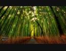 ■Trance Mix #089■ 壮大・感動系Uplifting Trance 2017梅雨