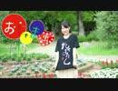 【22歳の誕生日に】おじゃま虫 踊ってみた【ひじき】