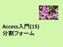 Access入門(15)分割フォーム