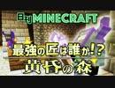第16位:【日刊Minecraft】最強の匠は誰か!?黄昏の森 ゴブリン騎士3日目【4人実況】