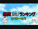 週間INUランキング 5/28~6/3
