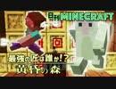 【日刊Minecraft】最強の匠は誰か!?黄昏の森 家作りの黄昏3日目【4人実況】
