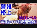 【韓国鳥インフルパニック突入】 関心⇒注意⇒警戒⇒深刻⇒ふぁびょん!