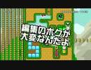 【ガルナ/オワタP】改造マリオをつくろう!【stage:99】