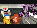 【Minecraft】生きる。#17【TFC実況】