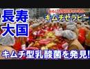 【韓国が世界最長寿国】 キムチセラピーが世界を救う!