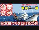 【韓国が日本に涙の懇願】 日本様、漁業交渉をしたいニダ!