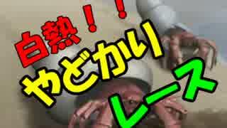 【ドキサバ全員恋愛宣言】兄貴、黒羽春風編part.2【テニスの王子様】