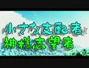 【第9回東方ニコ童祭】小さな支配者と神様志望者
